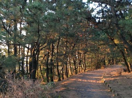 10_Miho_Walk